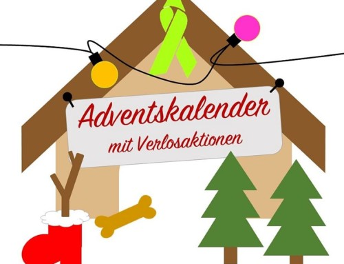 Tsd-Blogger-Adventskalender: 15. Türchen
