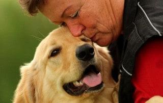 Ein glücklicher Hund - Hey-Fiffi.com, Foto: Lara Meiburg Photographie