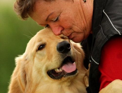 Danke, dass du nett bist zu deinem Hund!