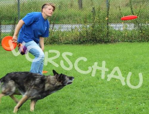 Dog-Frisbee: Fangen und Abgeben