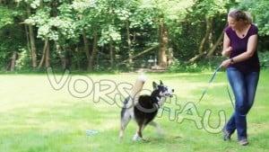 Leinenführigkeit für Hunde: Das Hier-lang-Signal - Hey-Fiffi.com