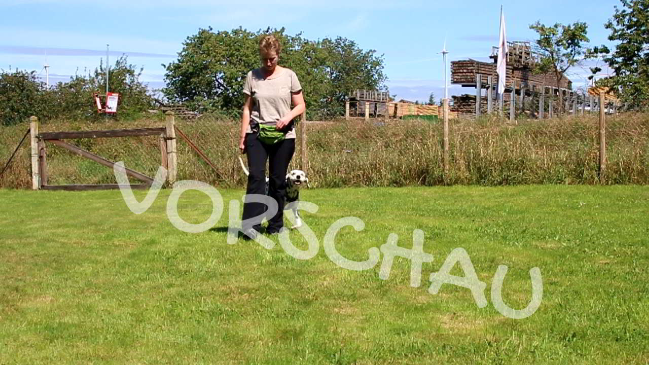 "Das Signal ""Wechsel"" für Hunde - Hey-Fiffi.com"