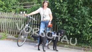 Radfahren mit angeleintem Hund - Hey-Fiffi.com