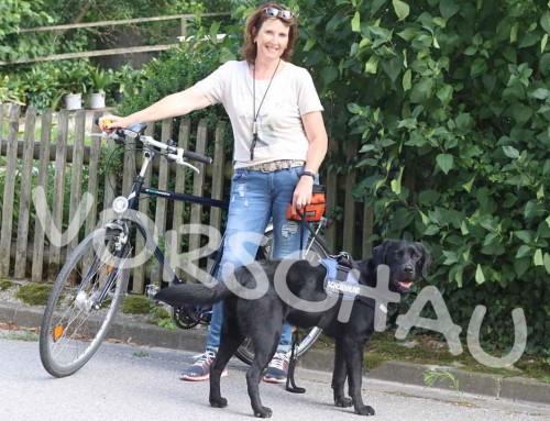 Radfahren mit angeleintem Hund