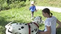 Beschäftigung für Kind und Hund (Suchspiel) - Hey-Fiffi.com