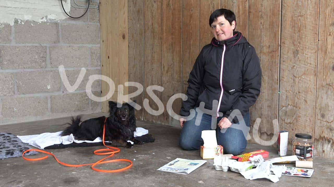 Futterbeschäftigung für Hunde - Hey-Fiffi.com