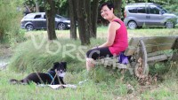 Entspannt beim Spaziergang - Ruheinseln für Hunde - Hey-Fiff.com