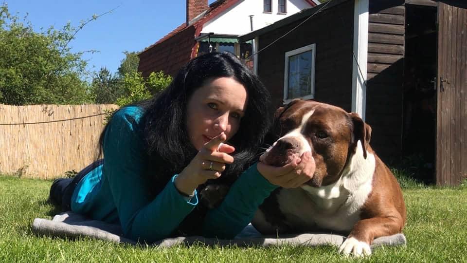 Rassebeschreibungen Ungeschont Der Old English Bulldog Hey Fiffi Com