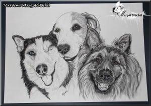 Nuka, Mara und Jumbo