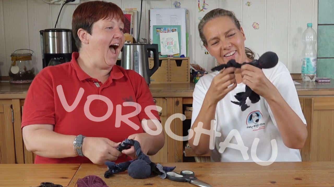 Hundespielzeug basteln: Ein Krake aus alten Socken - Hey-Fiffi.com