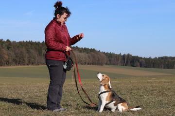 Frau mit Beagle - Hey-Fiffi.com