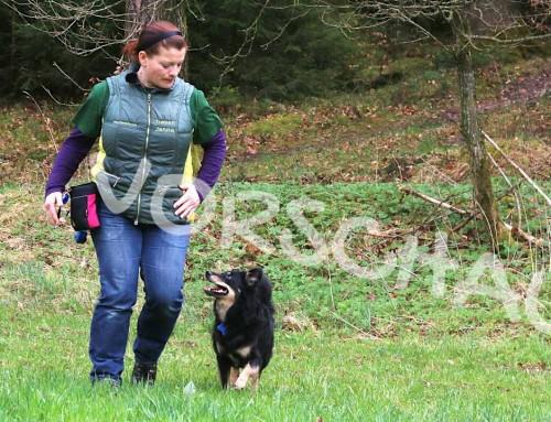 Bei-Fuß-Laufen für Streber