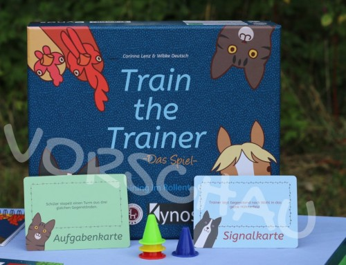 Train the Trainer: Hütchen stapeln